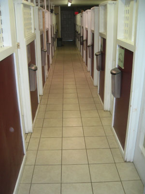 Our Canine Resort Rooms